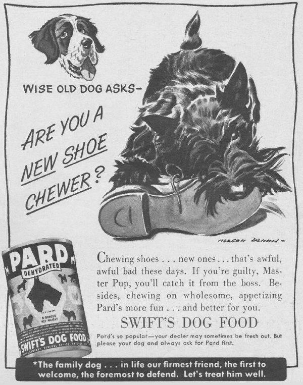 PARD DOG FOOD LIFE 06/22/1942 p. 87